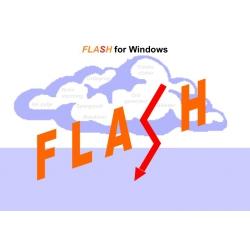 FLASH - e-værktøj til idegenering
